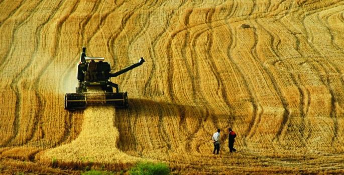 Sürdürülebilir tarımın önündeki engeller