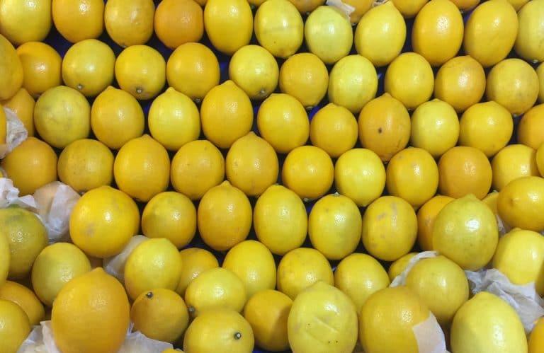 Limonda ihracat yasağının cezası üreticiye kesilmesin